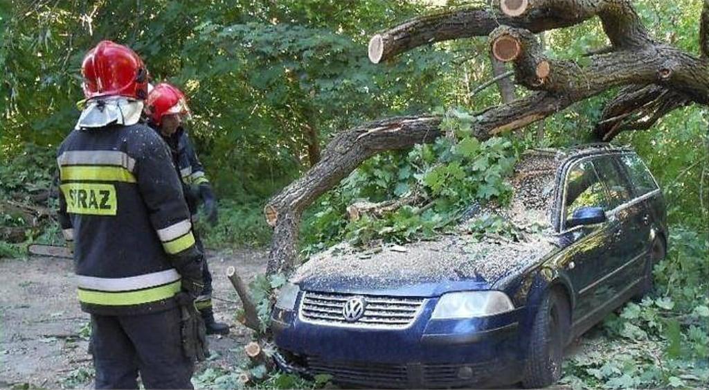 Auto uszkodzone przezgałąź, samochód VW Passat.