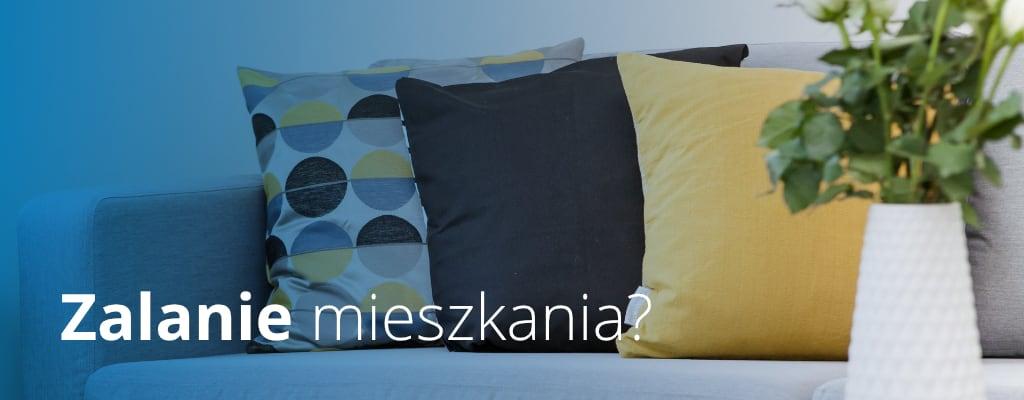 Mieszkanie, poduszki na sofie