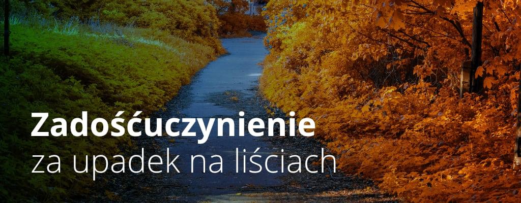Jesień, ścieżka, liście